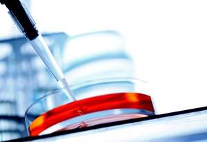 Получают ли стволовые клетки из жировой ткани