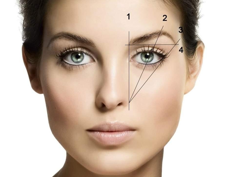 Форма бровей в зависимости от типа лица
